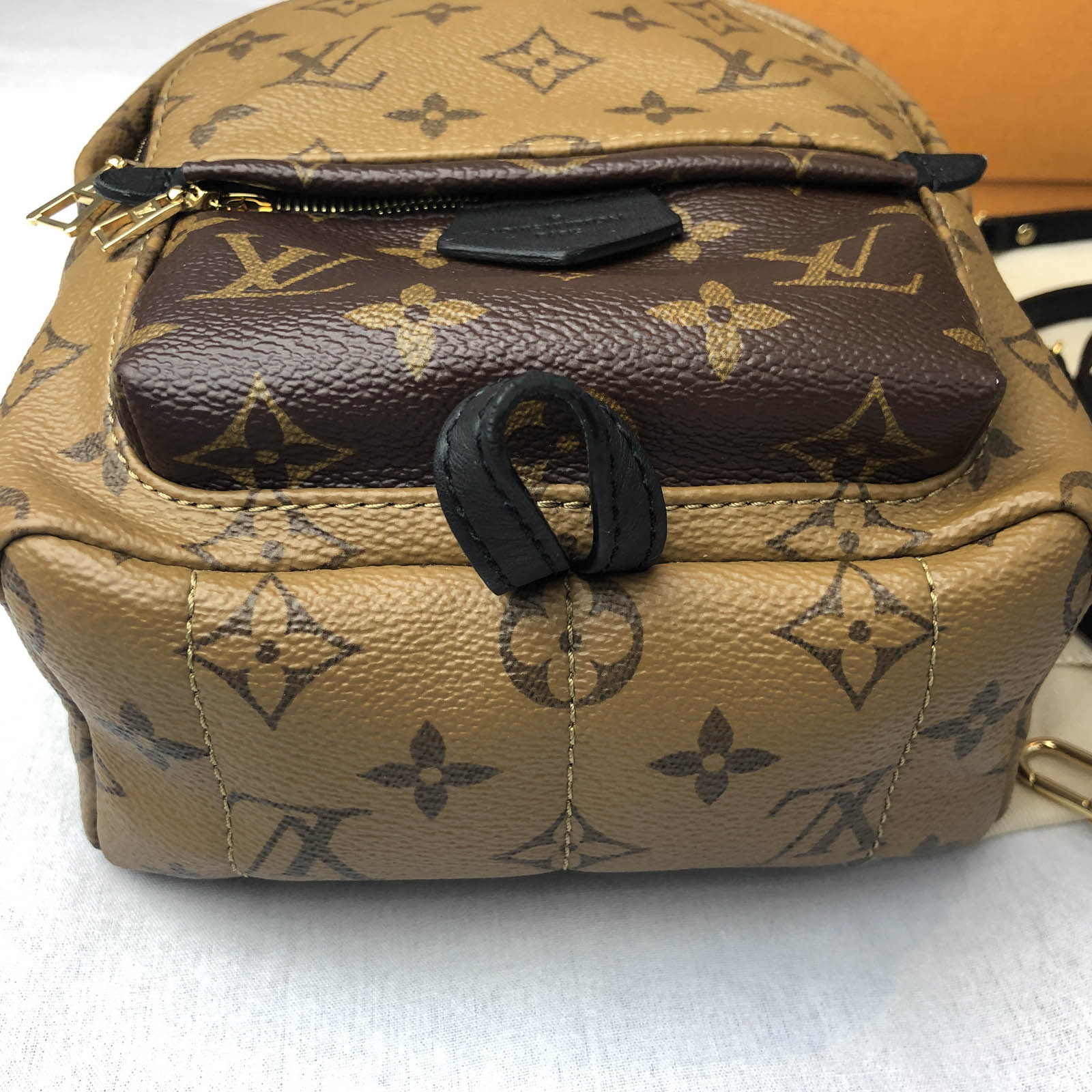 Louis Vuitton Palm Springs Mini Reverse Monogram Backpack