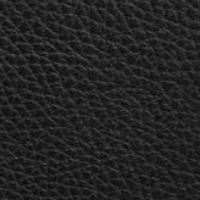Louis Vuitton Taurillon leather Black Care Instructions