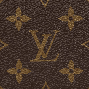 Louis Vuitton Monogram Canvas LV How to Clean and Care For