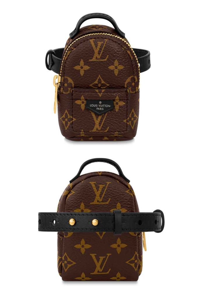 Louis Vuitton Smallest Designer Backpack