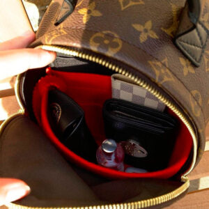 Louis Vuitton Palm Springs Mini Backpack Bag Liner Organiser