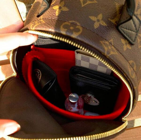 Louis Vuitton Palm Springs Mini Backpack Bag Liner Organiser