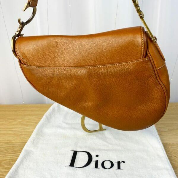 Dior Saddle Bag Tan Camel Gold Hardware on person model back